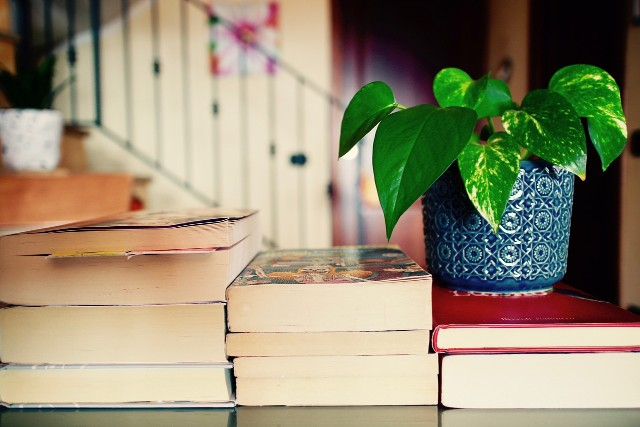 10 Best Business Books for Beginners
