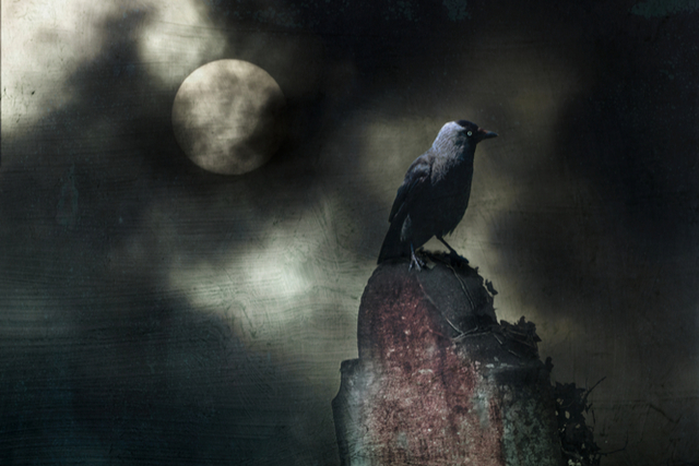 tone and mood in the raven a poem by edgar allan poe Poe had originally considered a parrot (whose speaking would have been realistic) instead of a raven, but he decided to use the raven because of the melancholy tone [of the poem], and the symbolism of ravens as birds of ill-omen.