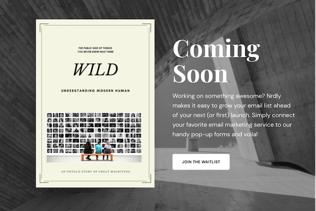 pre launch page with book cover