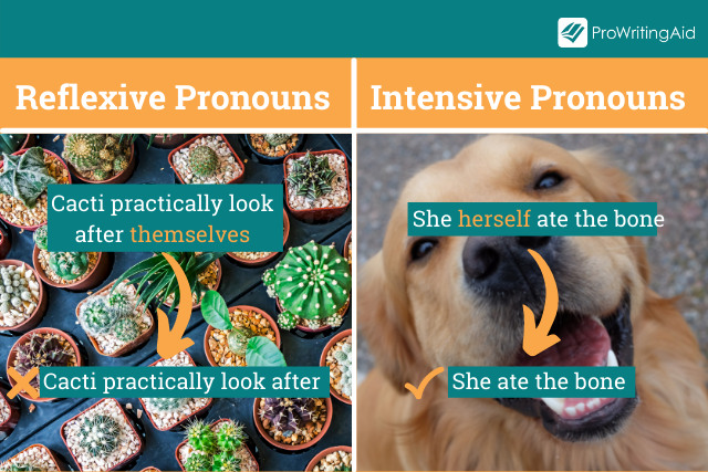 Reflexive Pronouns versus Intensive Pronouns