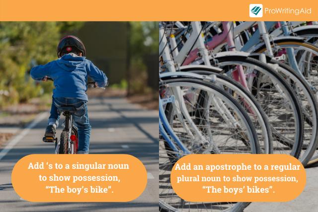 Regular Plural Nouns versus Singular Nouns