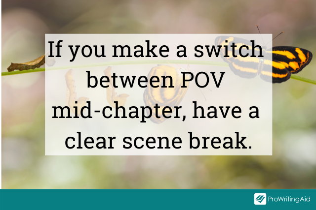 Switching point of view in a chapter