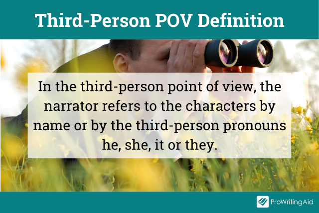 Definition of the third-person point of view
