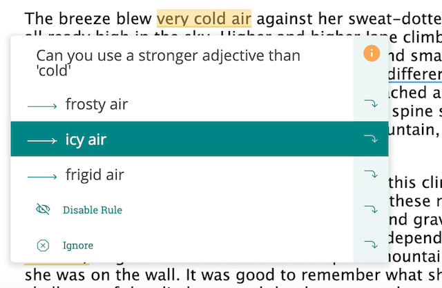 adjective replacement suggestion in prowritingaid software