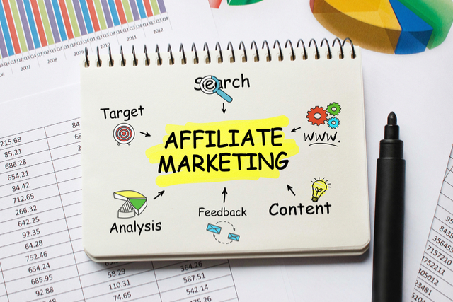 Affiliate Income for Dummies (And Clever People)