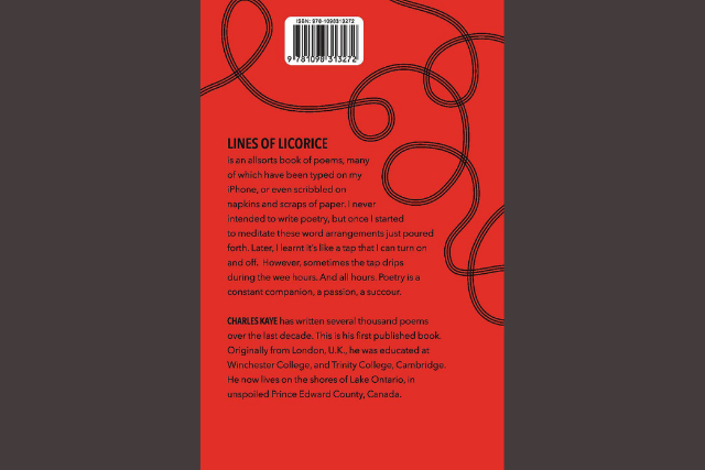red book back cover with black text and swirling black lines