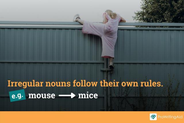 pluralizing irregular nouns: no rules