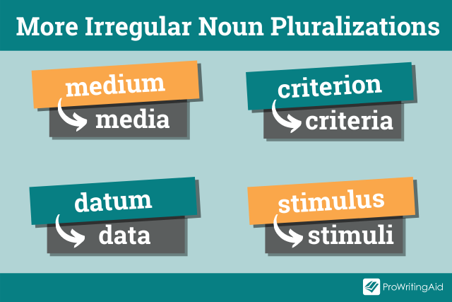 further examples of irregular pluralizations