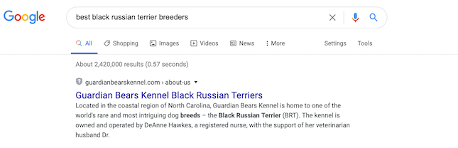 snippet showing in search results