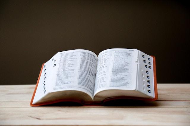 ProWritingAid dictionary