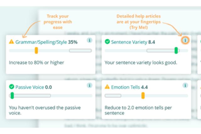 Screenshot of ProWritingAid's grammar check report