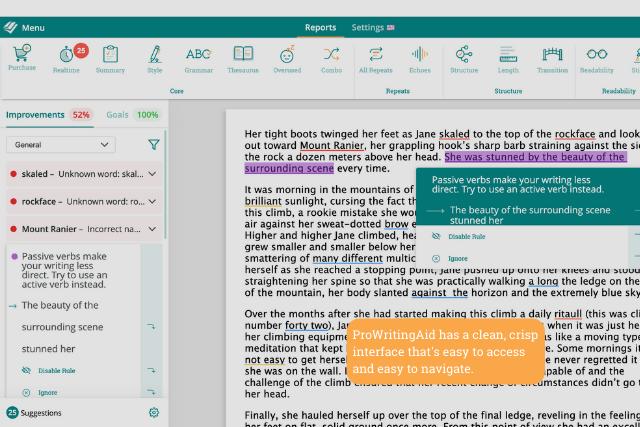 Screenshot of ProWritingAid web editor interface