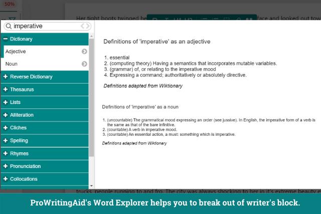 Screenshot of ProWritingAid's word explorer