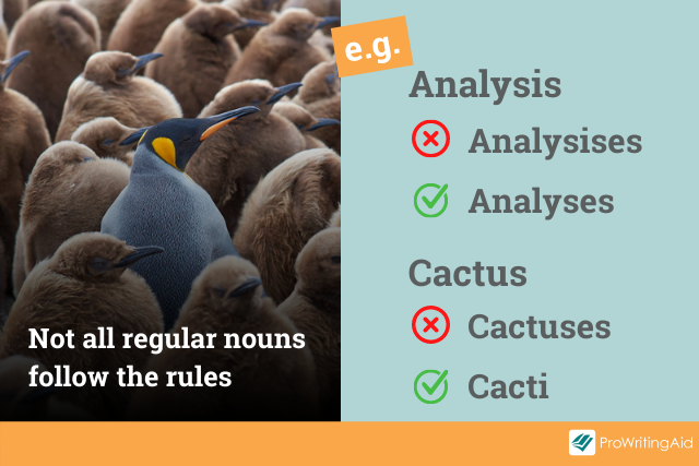exceptions to the rules examples: analyses and cacti