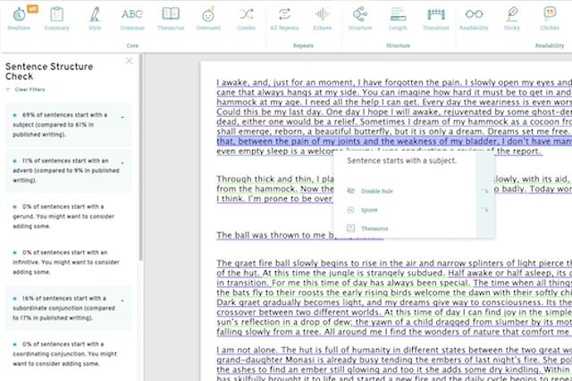 Screenshot demonstrating Structure Report