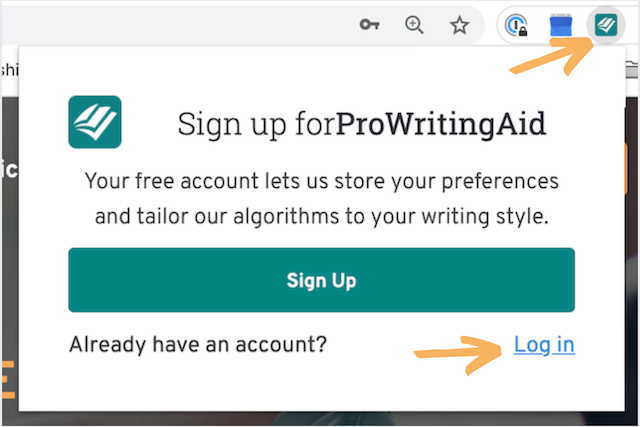 sign-in window in the browser extension