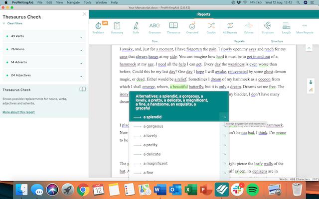 ProWritingAid thesaurus report