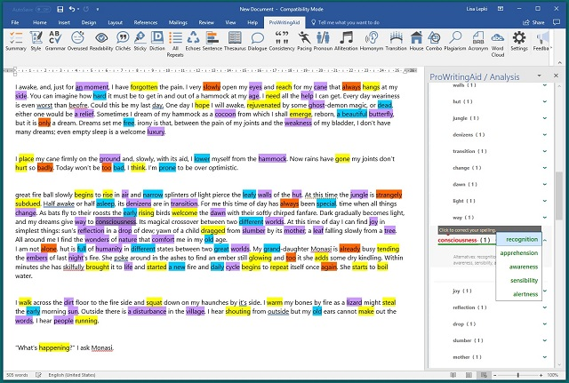 ProWritingAid Thesaurus Report