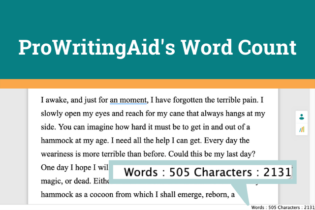 ProWritingAid's Word Count